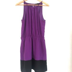 Express purple dress with satiny lining!